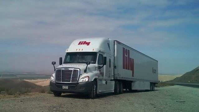 Lily Truck-1